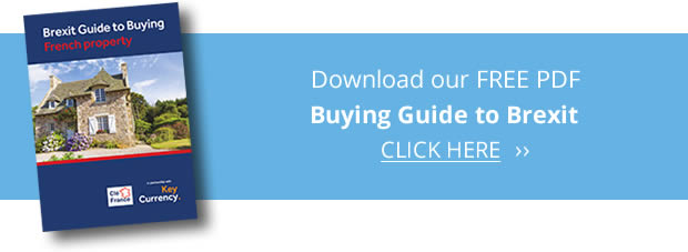 Brexit Guide Download