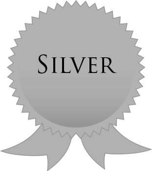 Silver Level advertise your French property for sale