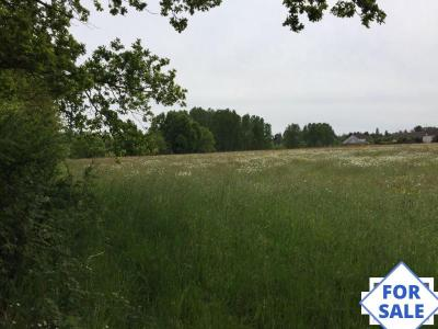 Two Building Plots For Sale