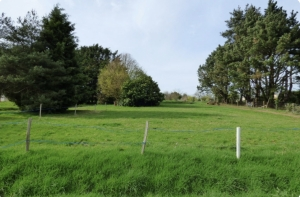 Building Plot of Land For Sale
