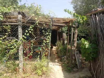 Small Bungalow To Renovate On A 10768 M2 Plot With Solar Energy And Well.