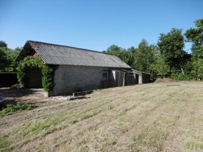 Countryside Barn to Renovate