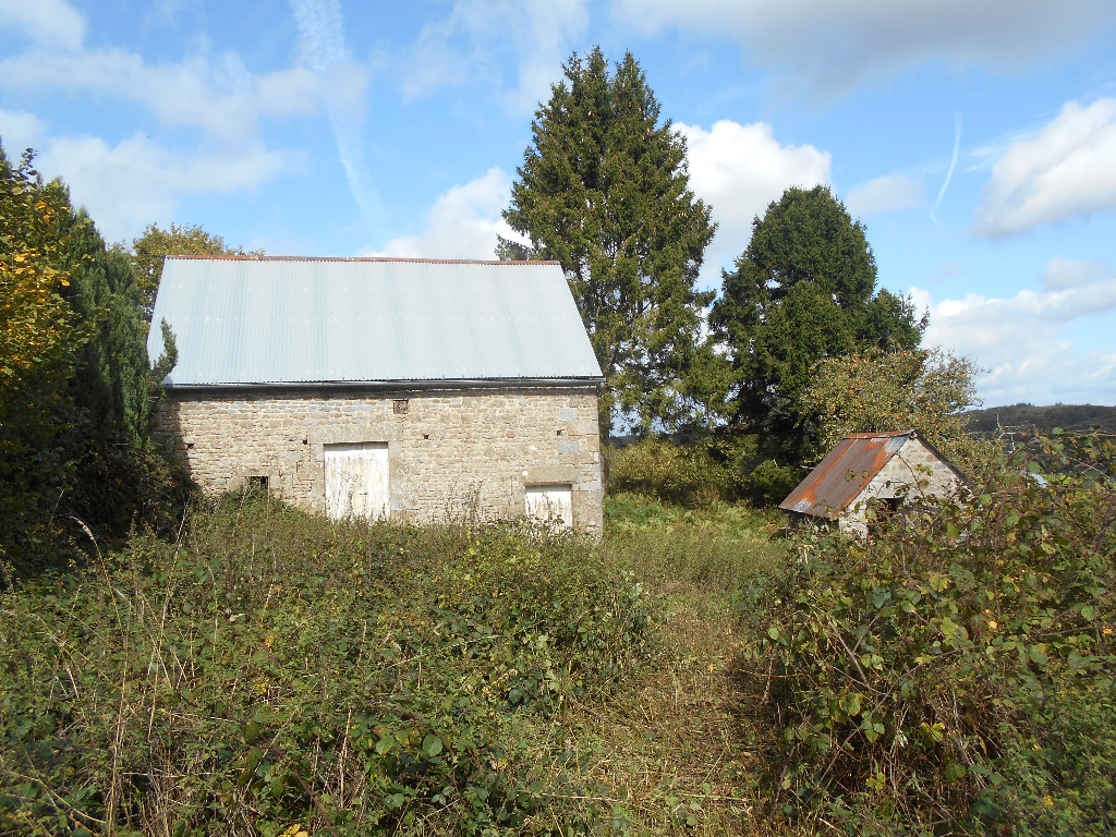 Rural House with Outbuilding