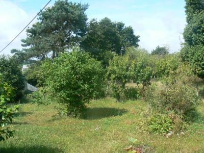 Rural House, Outbuilding, Over 2 Hectares