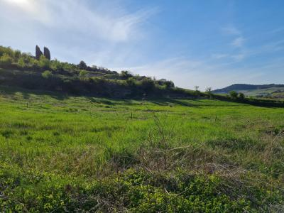 Serviced Land of 1550 M2